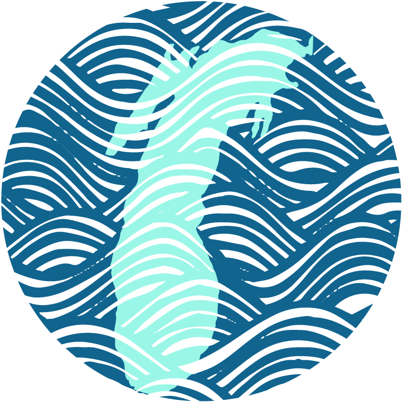 Lake Michigan Destinations Logo